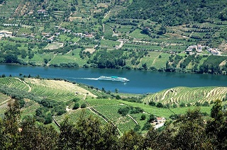 שייט נהרות בפורטוגל