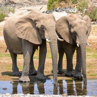 טיול לנמיביה המדהימה